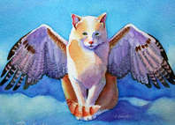 angel cat urn kitten wings cat paintings dot com