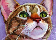 curious tabby kitten cat paintings dot com
