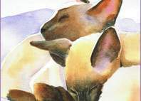 Seal Point Siamese Cats Painting