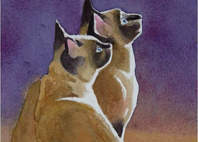 Siamese Cats Watercolor Painting