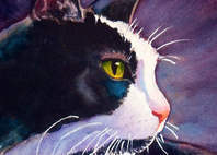 black cat tuxedo cat stormy Rachel Armington calendar cat paintings dot com