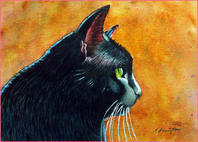 black cat paintings