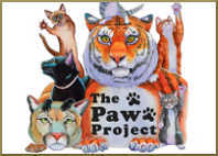 support the paws