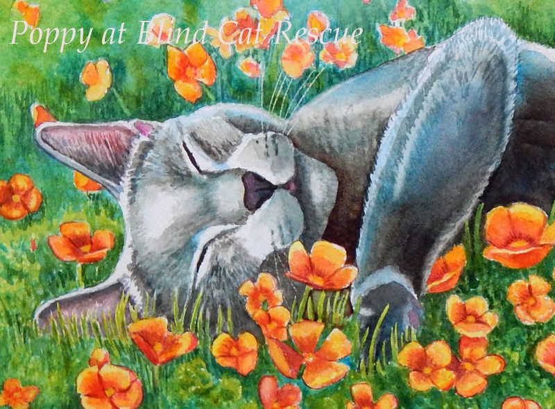 Painting Donated to Blind Cat Rescue Fundraiser